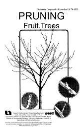 EC1233 Pruning Fruit Trees - Peace of Preparedness