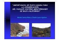 foro-punta-banda - Playas y costas de Ensenada
