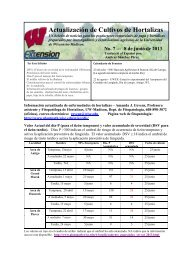 Actualización de Cultivos de Hortalizas - Department of Plant ...