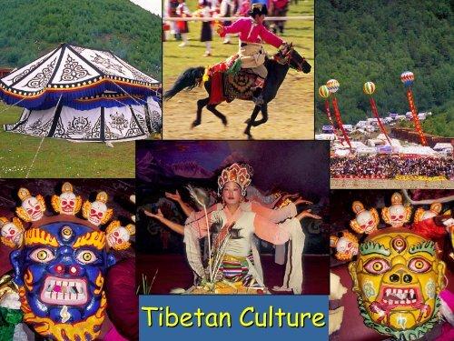 Tibetan Ethnobotany