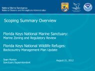 Scoping Summary Overview - Florida Keys National Marine Sanctuary