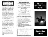 Horse Brochure