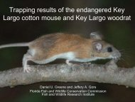 Trapping results of the endangered Key Largo cotton mouse and ...