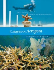 Caribbean Acropora Restoration Guide - The Florida Reef ...