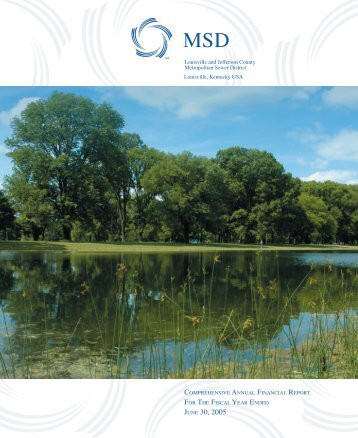 Comprehensive Annual Financial Report 2005 - MSD