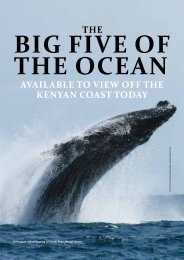 The Big 5 of the Ocean (2).pdf