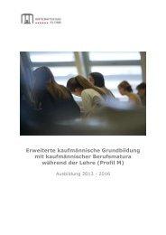 Informationsbroschüre - Wirtschaftsschule KV Chur