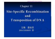 Site-Specific Recombination and Transposition of DNA