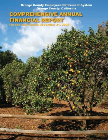 COMPREHENSIVE ANNUAL FINANCIAL REPORT - OCERS