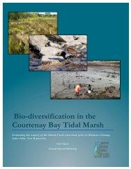 Bio-Diversification in the Courtenay Bay Tidal Marsh