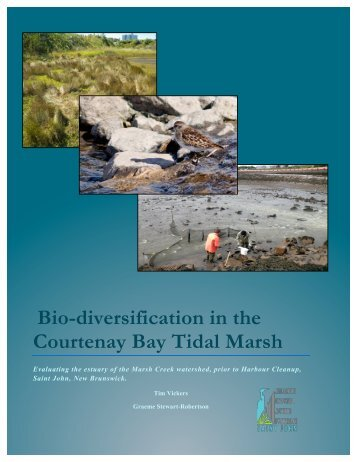 Bio-Diversification in the Courtenay Bay Tidal Marsh