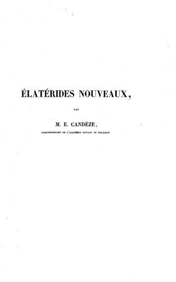 ELATERIDES NOUVEAUX,