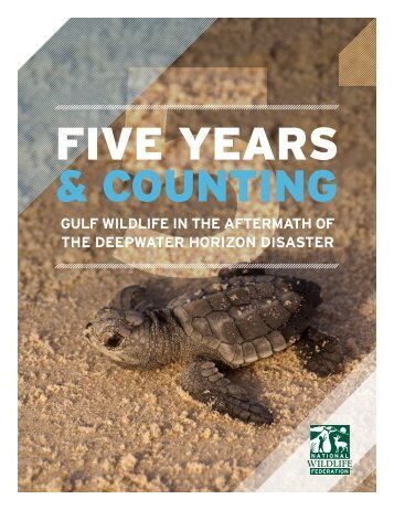 Gulf-Wildlife-In-the-Aftermath-of-the-Deepwater-Horizon-Disaster_Five-Years-and-Counting