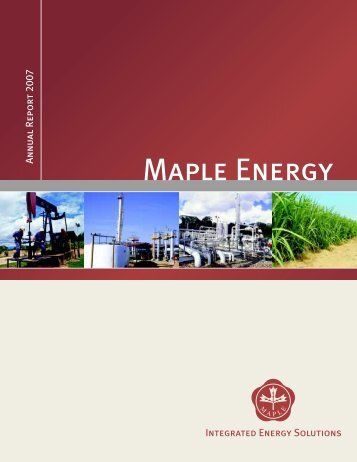 Annual Report 2007 (May 19, 2008) - Maple Energy