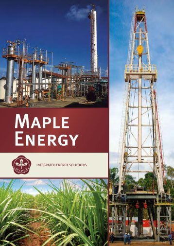Annual Report 2008 - Maple Energy