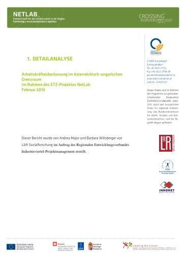 BP-netlab-100211 1.Detailanalyse Arbeitskräfteüberlassung L&R