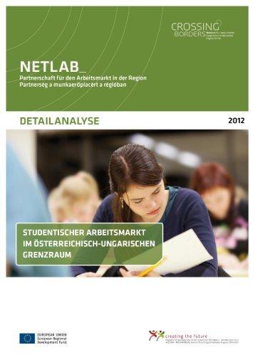 4. Detailanalyse NetLab Der Studentische Arbeitsmarkt