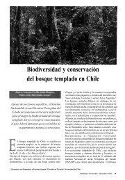 Biodiversidad y conservación del bosque templado en Chile