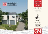 MEDIA DATEN 2012