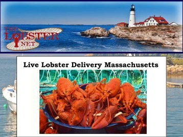 Live Lobster Delivery Massachusetts