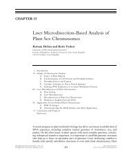 Laser Microdissection-Based Analysis of Plant Sex Chromosomes