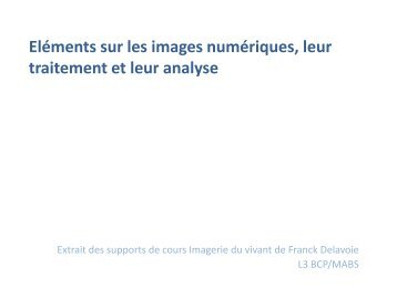 Elements sur les images numériques et ImageJ - silico.biotoul ...