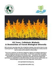 GE Trees Report - Global Justice Ecology Project