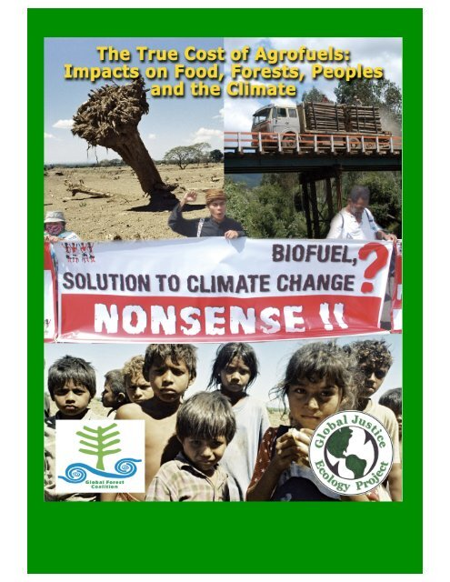 The Real Cost of Agrofuels - Convention on Biological Diversity