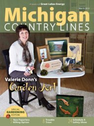 Shop Co-op! - Michigan Country Lines Magazine