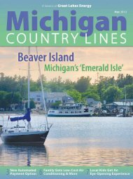Great - Michigan Country Lines Magazine