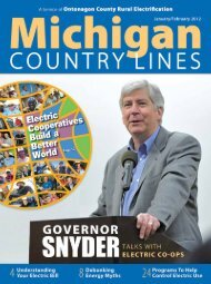 Electric - Michigan Country Lines Magazine