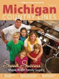 Energy - Michigan Country Lines Magazine