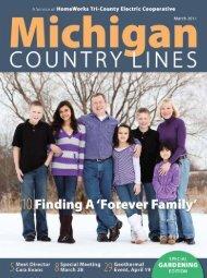 Change - Michigan Country Lines Magazine