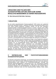 Ursachen und Folgen, pdf-Datei, 1 MB - ELSA Elbe