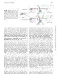 Immunol - European Vaccine Initiative - Page 5