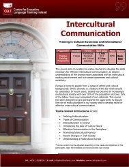 Intercultural Communication - Public Affairs Ireland
