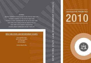 Create a Felony Child Endangerment Statute - Nyslec.org