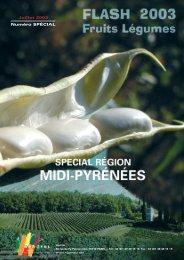 Numéro spécial région Midi-Pyrénées - 10 par jour