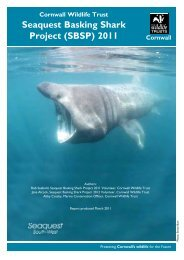 Seaquest Basking Shark Project (SBSP) 2011 - Cornwall Wildlife  Trust