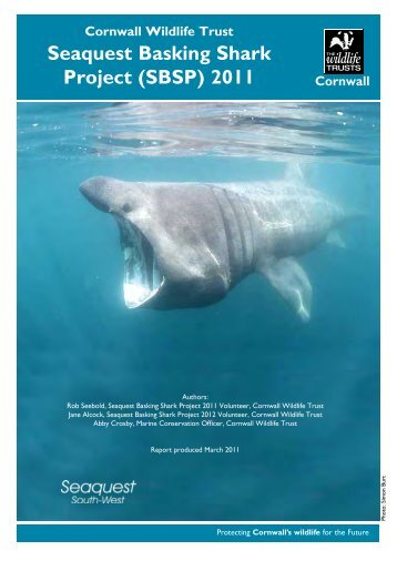 Seaquest Basking Shark Project (SBSP) 2011 - Cornwall Wildlife  Trust