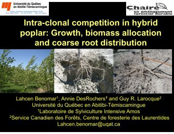 Intra-clonal competition in hybrid poplar: Growth biomass ... - UQAT.ca