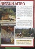 I nostri amici cavalli - Il Paretaio - Page 2