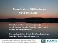Evon Natura 2000 –alueen virkistyskäyttö