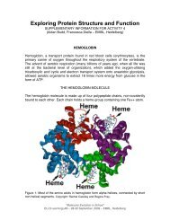 Exploring Protein Structure and Function