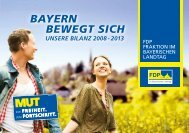 FDP_Bilanz2013