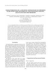 Characterization of a Coflowing MethaneAir Non ... - Yale University
