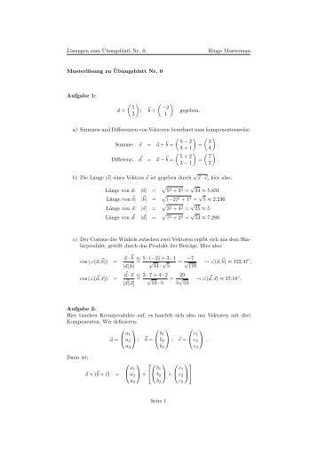 Lösungen zum Übungsblatt Nr. 0 Ringo Musterman ... - BOPS