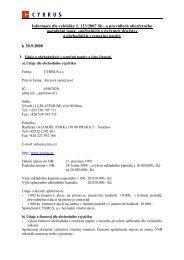 Informace o společnosti CYRRUS k 31.12. 2008