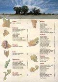 Nebensaison-Rabatt - Jenman African Safaris - Seite 3
