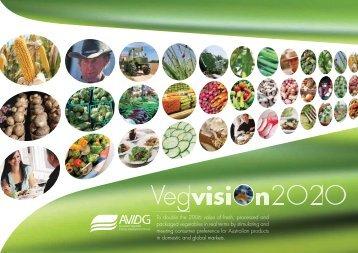 Vegvision 2020